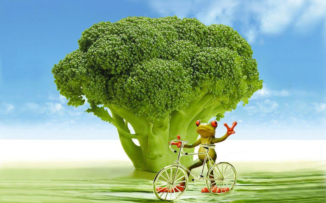 Die Kraft des Brokkoli